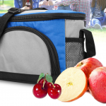 Best Insulated Lunch Box for 2019
